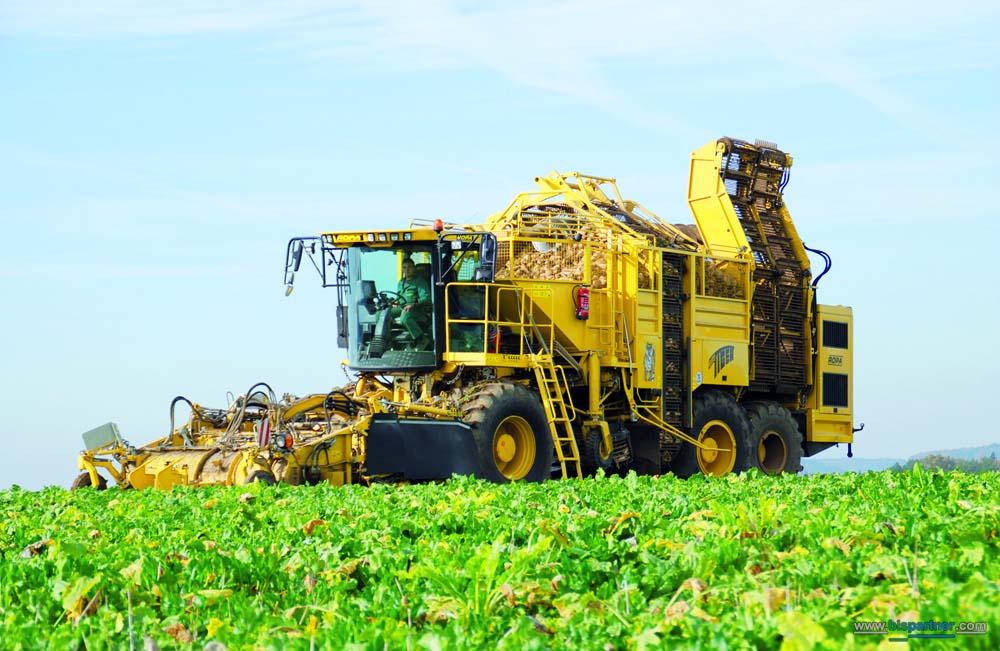 نتیجه تصویری برای کشاورزی ایران
